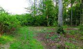 Randonnée Marche COYOLLES - en forêt de Retz_78_les rayons du Rond Capitaine - Photo 79