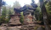 Randonnée Marche MUHLBACH-SUR-BRUCHE - Le Jardin des Fées par la cascade de Soulzbach - Photo 25