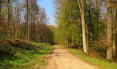 Randonnée Marche LONGPONT - en forêt de Retz_77_Longpont_Puiseux en Retz_AR - Photo 100