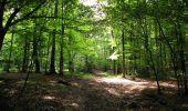 Randonnée Marche HARAMONT - en forêt de Retz_79_08_2019_vers Taillefontaine et Retheuil par les lisières - Photo 94