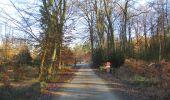 Trail Walk SAINT-JEAN-AUX-BOIS - en forêt de Compiègne_33_12_2019_les Tournantes de l'étang Saint-Jean et des Prés Saint-Jean - Photo 27