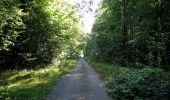Trail Walk DAMPLEUX - en forêt de Retz_80_sur la Route Tortue et la Route Droite - Photo 164