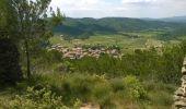 Randonnée A pied Coustouge - COUSTOUGE: Au-dessus de Coustouge - Photo 15