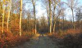 Trail Walk SAINT-JEAN-AUX-BOIS - en forêt de Compiègne_33_12_2019_les Tournantes de l'étang Saint-Jean et des Prés Saint-Jean - Photo 193