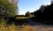 Trail Walk DAMPLEUX - en forêt de Retz_80_sur la Route Tortue et la Route Droite - Photo 57