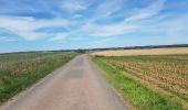 Randonnée Trail CHOUAIN - 20200712 20,5K Chouain Cristot Audrieu - Photo 1