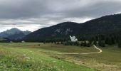 Trail Walk THONES - Les Glières depuis le Crêt - Photo 6