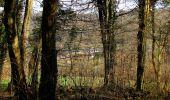 Trail On foot VIEUX-MOULIN - en forêt de Compiègne_23_la Grotte des Ramoneurs_le Mont Berny - Photo 52