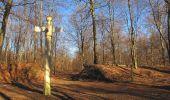 Trail Walk PIERREFONDS - en forêt de Compiègne_24_Tournantes sur le Voliard et sur la Fortelle_chaussée Brunehaut - Photo 28