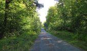 Trail Walk DAMPLEUX - en forêt de Retz_80_sur la Route Tortue et la Route Droite - Photo 214