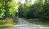 Randonnée Marche SAINT-JEAN-AUX-BOIS - en forêt de Compiègne_2_ruines gallo-romaines de Champlieu_les Petits Monts - Photo 172