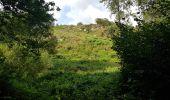 Randonnée Marche LOCMELAR - ballade 270719 - Photo 6