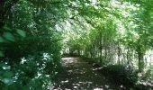 Randonnée Marche SENTHEIM - Sentheim Buchberg - Photo 2