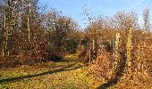 Trail On foot VIEUX-MOULIN - en forêt de Compiègne_23_la Grotte des Ramoneurs_le Mont Berny - Photo 20