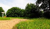 Randonnée Marche COYOLLES - en forêt de Retz_78_les rayons du Rond Capitaine - Photo 114