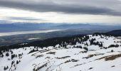 Randonnée Raquettes à neige DIVONNE-LES-BAINS - La Dole alt 1676m en raquette - Photo 16