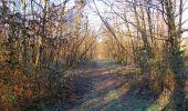Trail Walk SAINT-JEAN-AUX-BOIS - en forêt de Compiègne_33_12_2019_les Tournantes de l'étang Saint-Jean et des Prés Saint-Jean - Photo 44