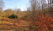 Trail On foot VIEUX-MOULIN - en forêt de Compiègne_23_la Grotte des Ramoneurs_le Mont Berny - Photo 13