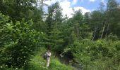 Trail Walk REICHSHOFFEN - 2020-05-28  Plan D'eau De Wolfartshoffen au printemps - Photo 7