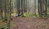 Trail Walk Sainte-Ode - rando lavacherie 29/12/2020 - Photo 14