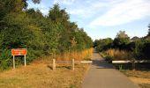 Randonnée Marche LACROIX-SAINT-OUEN - en forêt de Compiègne_35_la Croix Saint-Sauveur_le Ru du Goderu - Photo 82