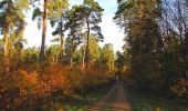 Randonnée Marche SAINT-JEAN-AUX-BOIS - en forêt de Compiègne_19_le Puits d'Antin_les Mares St-Louis_La Muette - Photo 29