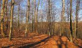 Trail Walk PIERREFONDS - en forêt de Compiègne_24_Tournantes sur le Voliard et sur la Fortelle_chaussée Brunehaut - Photo 65