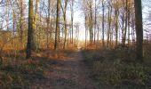 Trail Walk SAINT-JEAN-AUX-BOIS - en forêt de Compiègne_33_12_2019_les Tournantes de l'étang Saint-Jean et des Prés Saint-Jean - Photo 71