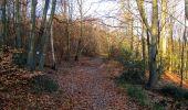 Trail Walk PIERREFONDS - en forêt de Compiègne_24_Tournantes sur le Voliard et sur la Fortelle_chaussée Brunehaut - Photo 101