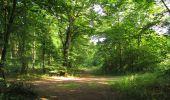Randonnée Marche LACROIX-SAINT-OUEN - en forêt de Compiègne_35_la Croix Saint-Sauveur_le Ru du Goderu - Photo 74
