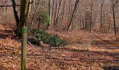 Trail Walk PIERREFONDS - en forêt de Compiègne_24_Tournantes sur le Voliard et sur la Fortelle_chaussée Brunehaut - Photo 29