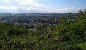 Randonnée Marche SENTHEIM - Bucherg - Photo 16
