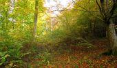 Randonnée Marche SAINT-JEAN-AUX-BOIS - en forêt de Compiègne_32_11_2019_les Tournantes de la Muette et sous la Tête Saint-Jean - Photo 160
