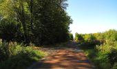 Trail Walk DAMPLEUX - en forêt de Retz_80_sur la Route Tortue et la Route Droite - Photo 299