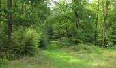 Randonnée Marche LONGPONT - en foret de Retz_ 41_Longpont_Vertes Feuilles_AR - Photo 143