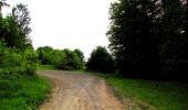 Randonnée Marche COYOLLES - en forêt de Retz_78_les rayons du Rond Capitaine - Photo 10