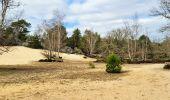 Randonnée Marche NOISY-SUR-ECOLE - Boucle les trois pignons Fontainebleau - Photo 2