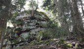 Randonnée Marche MUHLBACH-SUR-BRUCHE - Le Jardin des Fées par la cascade de Soulzbach - Photo 23