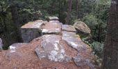 Randonnée Marche RIBEAUVILLE - Le Taennchel à partir du Schelmenkopf - Photo 6