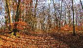 Trail On foot VIEUX-MOULIN - en forêt de Compiègne_23_la Grotte des Ramoneurs_le Mont Berny - Photo 113