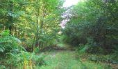 Randonnée A pied VILLERS-COTTERETS - le GR11A  dans la Forêt de Retz  - Photo 113