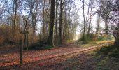 Trail Walk SAINT-JEAN-AUX-BOIS - en forêt de Compiègne_33_12_2019_les Tournantes de l'étang Saint-Jean et des Prés Saint-Jean - Photo 59