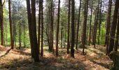 Randonnée Marche LONGPONT - en forêt de Retz_77_Longpont_Puiseux en Retz_AR - Photo 32