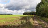 Trail Walk Andenne - sclaigneaux 1 - Photo 9