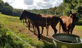Randonnée Marche LOCMELAR - ballade 270719 - Photo 34