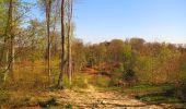 Randonnée Marche LONGPONT - en forêt de Retz_77_Longpont_Puiseux en Retz_AR - Photo 38