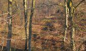 Trail Walk RETHEUIL - en forêt de Retz_76_dans les forêts de Retz et de Compiègne - Photo 26