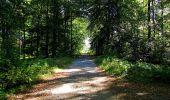 Trail Walk DAMPLEUX - en forêt de Retz_80_sur la Route Tortue et la Route Droite - Photo 234