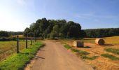 Randonnée Marche HARAMONT - en forêt de Retz_79_08_2019_vers Taillefontaine et Retheuil par les lisières - Photo 37