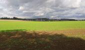 Trail Walk Andenne - sclaigneaux 1 - Photo 10